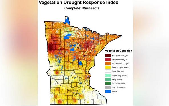 Vegetation Drought Pic